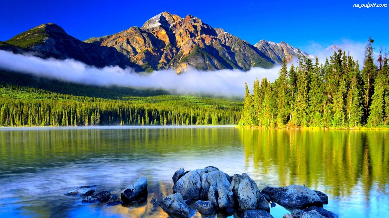 Choinki Jezioro Szczyty Kamienie